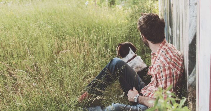 10 Advices to follow at the time of buying pet insurance