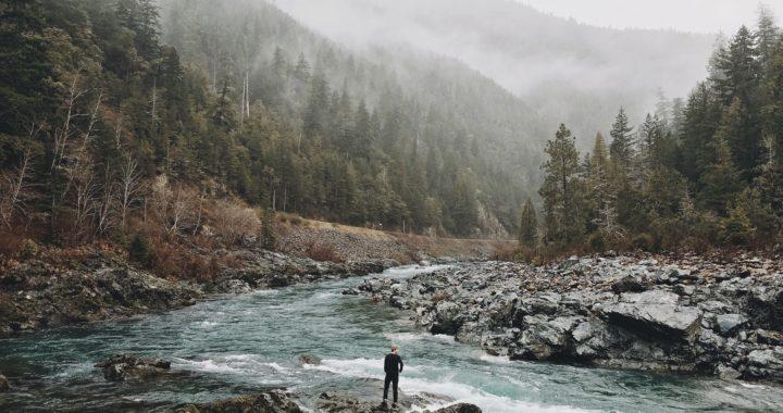 TripInsurance Travel Insurance Best Review: 2019