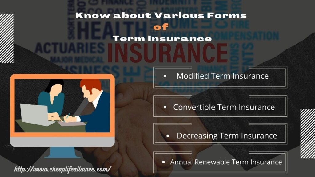 Know about Various Forms of Term Insurance
